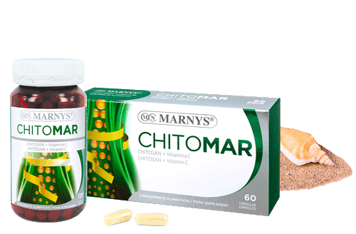 MN319-G - Chitomar